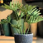 Philodendro Selloum Artificial